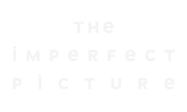 the-imperfect-picture-title-04